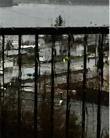 Screen Shot 2018-04-13 at 8.01.43 AM