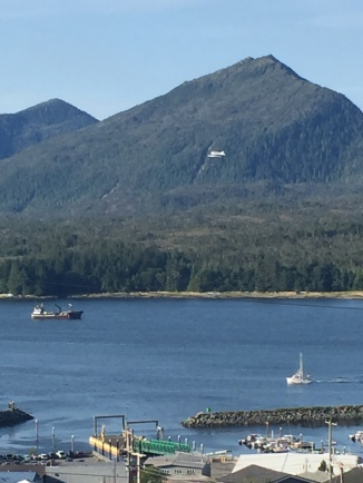 Tender, float plane and troller this AM